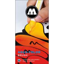 Aqua Color Brush flyer